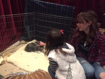 Nicole teaches a young fan how to pat a bunny!